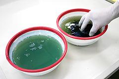 水洗いと発色剤EC